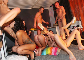 Free college party porn tube